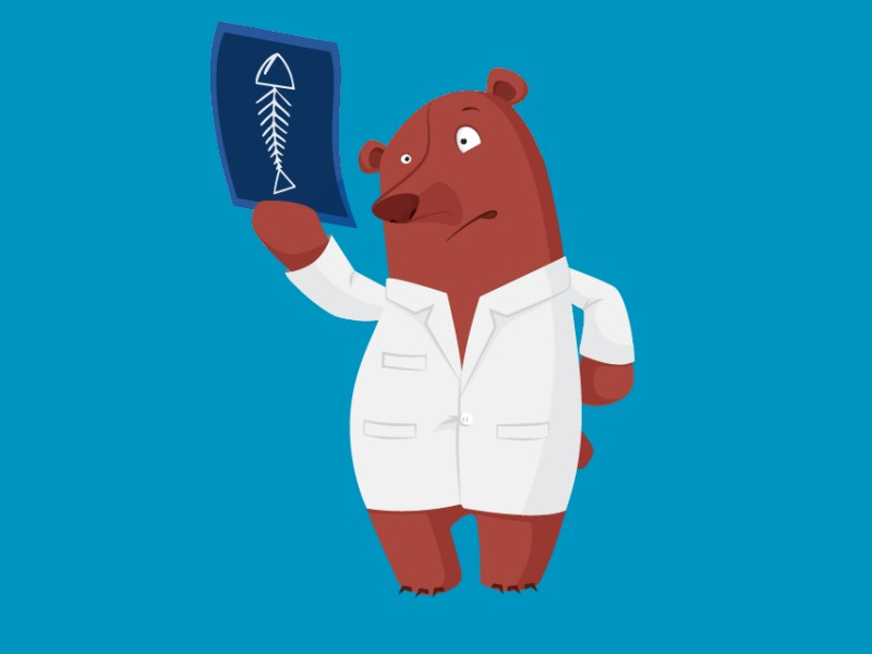 medvjed doktor